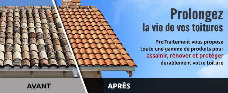 protection hydrofuge toiture d moussage toiture. Black Bedroom Furniture Sets. Home Design Ideas